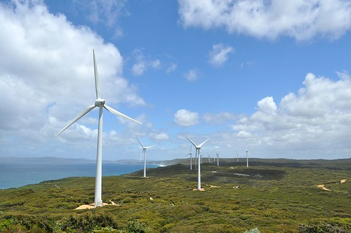 Windfarm, Jan 2011 052