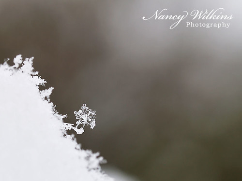 snowflake acrobatics