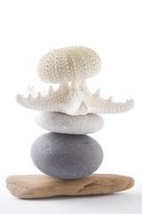 Seashore Stack (Alex Bramwell) Tags: wood detail tower art beach nature poster starfish stack pebble whitebackground driftwood zen seashell highkey conch seaurchin