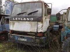130120111630 (uk_senator) Tags: yard truck milk automobile lorry 1984 breakers 1985 scrap wrecked hertfordshire leyland herts marque freightliner wincanton uksenator b607lpj