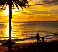 Walking the dog (Steve-h) Tags: sunset red sea orange woman dog brown sun sunlight man black art tourism beach nature sunshine yellow clouds reflections evening design spain europe mediterranean waves tourists andalucia palmtree recreation andalusia aerlingus gentle steveh canonef1635mmf28liiusm canoneos5dmarkii mygearandmepremium mygearandmebronze mygearandmesilver mygearandmegold mygearandmeplatinum mygearandmediamond marellacostadelsol rememberthatmomentlevel4 rememberthatmomentlevel1 rememberthatmomentlevel2 rememberthatmomentlevel3 rememberthatmomentlevel7 rememberthatmomentlevel9 rememberthatmomentlevel5 rememberthatmomentlevel6 rememberthatmomentlevel8 rememberthatmomentlevel10