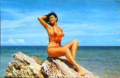 Betty Page (S_Crews) Tags: vintage postcard pinup bettypage hwhannau