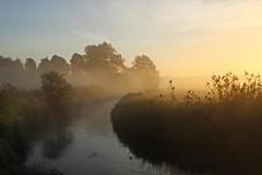 Misty morning (annemiekecloosterman) Tags: mist morning sunrise river creek water reflection nature