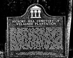 Hickory Hill Cemetery of Welaunee Plantation (sctag1015) Tags: cemetery tallahassee slavery forgotten abandoned miccosukee greenway park history lost nikond7100 plantation past farmer grave headstone tombstone heritage