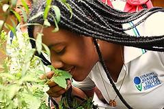 Disfrutando del aroma de las plantas.Enjoying the aroma of plants (Rik GJ) Tags: oler rojo verde planta amigos vida disfrutar pasin jardn hermanos compartir huerta smelling red green plant friends life enjoy passion garden brothers sharing