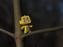 BokehCan - #m43turkiye (Ciddi Biri) Tags: penepl3 vivitar55mmf28 aynasz bokeh brunch creamybackground dal kindersurprise m43turkiye mirrorless oyuncak toy tree yellow yellowman autumnhero