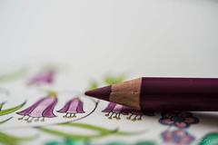 Crayon, coloriage et couleurs (LACPIXEL) Tags: macro macromondays monday ppep pencil crayon lpiz coloriage colorear colouring couleurs colores colours inside intrieur lumirenaturelle luznatural naturallight tamron nikon nikonfrance nikonfr d4s fx flickr lacpixel