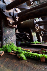 Moss (thisafternoon) Tags: november winter urban mos groen exploring bart belgi visser pim pane gent planten urbanexploring 2010 koud vlaanderen iskander staal geerts elektriciteitscentrale electriciteitscentrale belgi ecvb