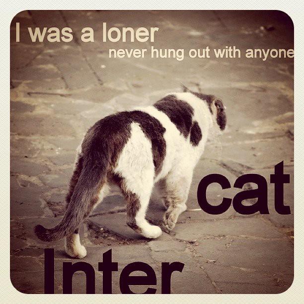 Loner 2