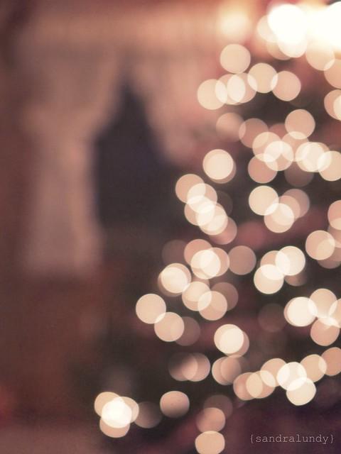 december views 03