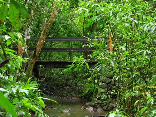 Pequena ponte sobre riacho