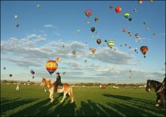 (K. Sawyer Photography) Tags: sky horses balloons shadows balloon floating police cop hotairballoon balloonfiesta albuquerqueinternationalballoonfiesta albuquerquenewmexico