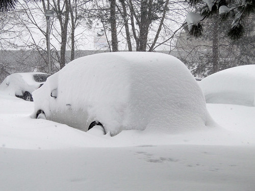 Snowbank or SUV?