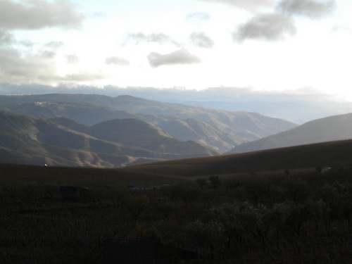 Winter in the Douro Valley