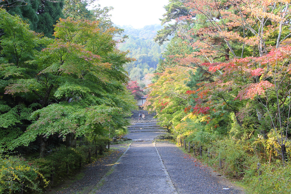 Kyoto, the city of Japanese traditions and culture Part3 (3)