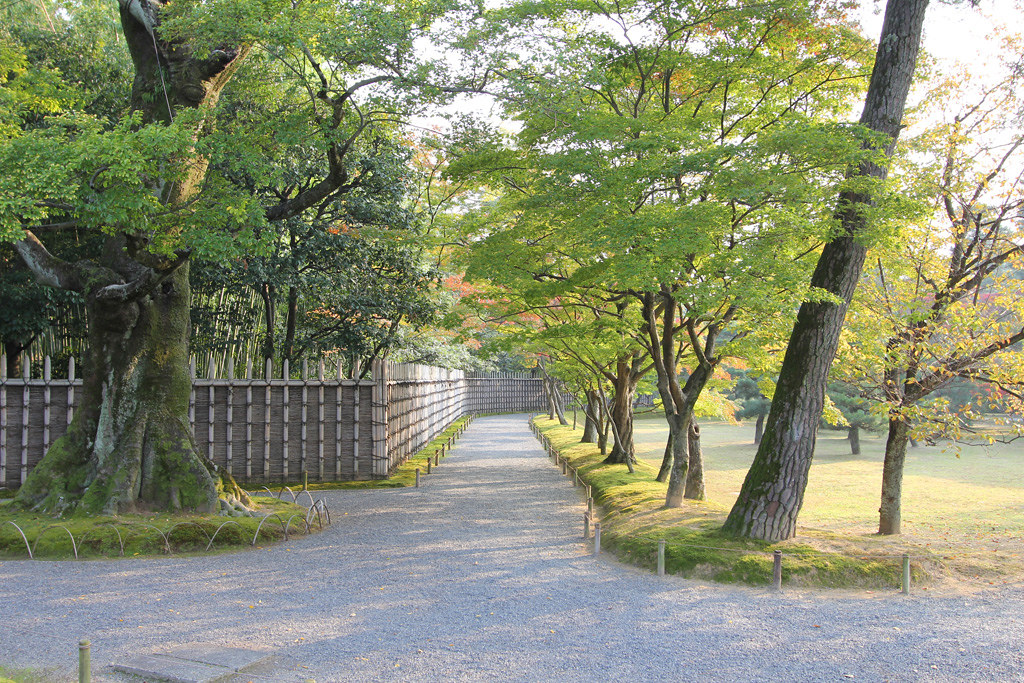 Kyoto, the city of Japanese traditions and culture Part3 (22)