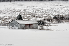 Ma cabane au Canada / My cabin in Canada (guysamsonphoto) Tags: winter snow hiver neige chesterville nikkor70300vr nikond7000 guysamson