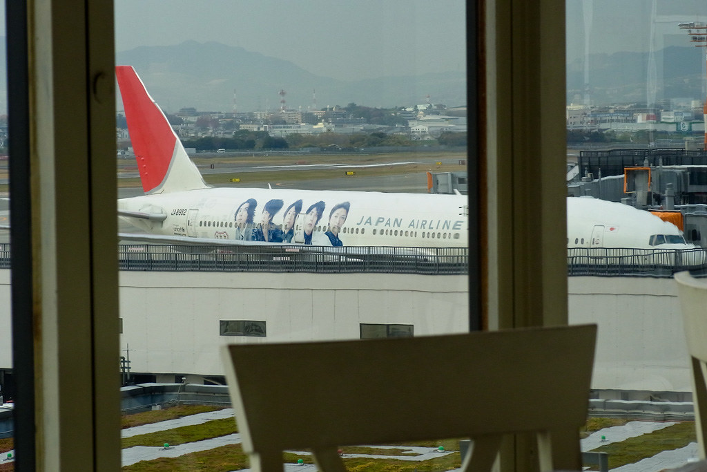 JAL's ARASHI JET (view from the restaurant)