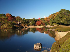 Rikugi-en - Tokyo, Japan (_takau99) Tags: trip travel vacation holiday reflection topv111 japan gardens pen garden tokyo japanesegarden pond december olympus autumnleaves   sengoku 2010 rikugien   komagome   takau99 penlite   rikugiengardens epl1  gettyimagesjapanq1