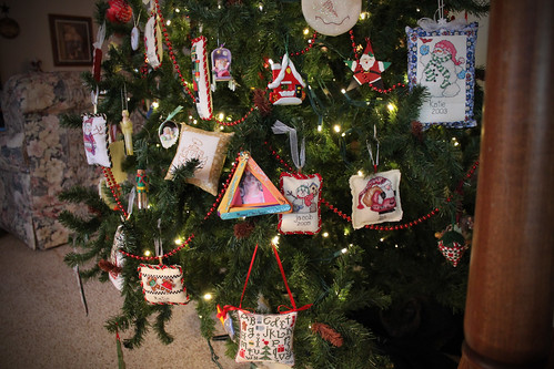 Our Tree 11