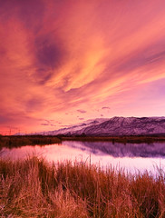 Sunset with sierra wave cloud over the Owens River (Robin Black Photography) Tags: california pink light sunset sky distortion mountains reflection river spectacular mirror scenic granite sierranevada highsierras incredible lenticular bishop cloudporn cloudformation owensvalley easternsierras memorable owensriver inyocounty sierrawave rangeoflight robinblackphotography