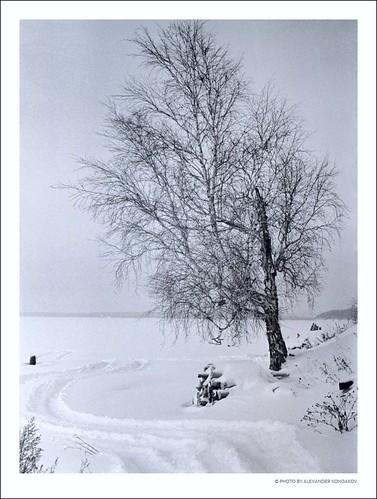 © Photo by Alexander Kondakov