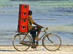 Coca-Cola delivery by bicycle