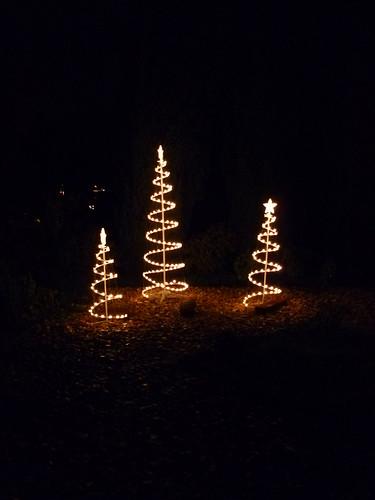 XMAS LIGHTS 3