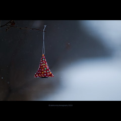 Christmas tree (stella-mia) Tags: christmas xmas winter snow norway miniature dof bokeh 85mm christmastree explore snowing christmasornament frontpage sn happychristmas seasonsgreetings happyholiday merrychristmasandahappynewyear christmasmood implicity canon5dmkii