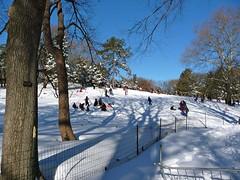 Central Park, NYC Blizzard 2010 (rosinberg) Tags: nyc winter snow centralpark manhattan snowstorm blizzard december2010