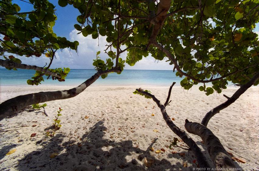 Islands of  Barbuda 2007 © Photo by Alexander Kondakov