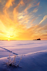 across the plain (Youronas) Tags: wood pink schnee light red sky orange sun sunlight snow plant cold tree ice nature clouds forest sunrise canon germany landscape bayern deutschland bavaria licht sticks frost december dusk natur pflanze lowlands spuren traces himmel wolken frosty franconia trail 7d fields dmmerung franken kalt eis twigs landschaft sonne wald plain sonnenaufgang daybreak flur frostig deerpass morgendmmerung sonnenlicht stngel 1585 fusspuren