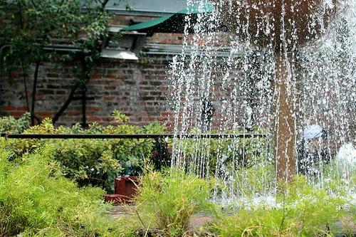 the fountain at pat-o's