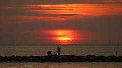 Eclipse 4-1-2011 (4) (calafellvalo) Tags: sea sun sol eclipse mar swan natura aves luna garraf solareclipse marinas cisnes foix eclipsi cubelles amanacer eclipsedesol calafellvalo cubelleseclipsecisnefoix