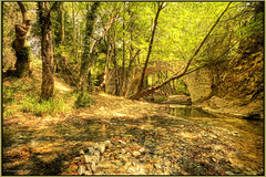 / Routhkia Venetian bridge (-Filippos-) Tags: old bridge trees nature water forest river cyprus venetian cipro 2009 hdr paphos zypern kypros chypre photomatix   kipr  xeros            rudias rudia routhkia roudkia