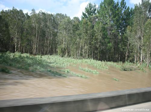 PAD 12.01.11 Floods