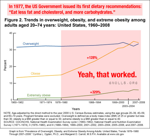 In 1977, the US Government issued its first dietary recommendations: eat less fat and cholesterol, and more carbohydrates.  Yeah, that worked.
