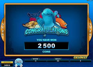free Dolphin Coast bonus win