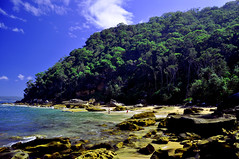 A secluded beach at Pittwater (Dawn Woodhouse) Tags: pittwater kuringgai wow1 wow2 wow3 wow4 theelitephotographer seascapelandscapepicturesquebeautifulgreencmndcolourcolourfulsummerpalmbeachsydneyaustralia