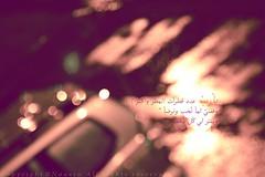 rain <3 bokeh (NOURA - alshaya ) Tags: love rain canon flickr bokeh d iso explore 500 non 2010 lovly noura 2011          nouero