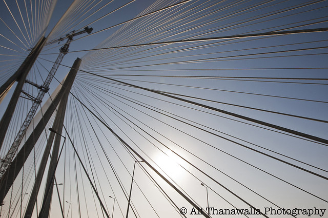 The Sealink
