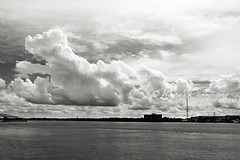 (negra223) Tags: above bridge sky blackandwhite bw copyright sunlight storm tower nature water beautiful weather clouds buildings river moving amazing thought power angle natural bright florida lol wideshot low wide large huge jacksonville layers feeling awe drama wandering rolling allrightsreserved stjohnsriver jacksonvillelanding rollingin fornow shotinbw onbusiness appreciatingbeauty outearly almosttouchingthehorizon thisiswhatheavenmustlooklike
