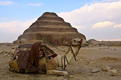 The stepped pyramid with an intruder, Saqqara, Egypt (fabriziogiordano23) Tags: africa sky desert pyramid egypt camel cielo pharaoh egitto saqqara deserto stepped piramide djoser dromedario zoser steppedpyramid gradoni beautifulphoto faraone flickraward allxpressus piramideagradoni flickrestrellas doublyniceshot tripleniceshot flickraward5 mygearandme ringexcellence artistoftheyearlevel4