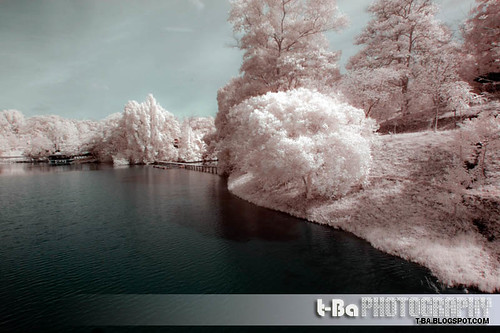 Lake - IR