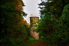 Aussichtsturm Rauschenberg (Petersberg FD) (andreas.gisselmann) Tags: aussichtsturm wald natur herbst herbstfarbe wandern