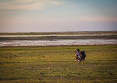Maurício Rocha - Velha Remanso (Tovinho Regis) Tags: bahia brasil brazil caixadágua fotógrafo lagodesobradinho mauríciorocha nordeste remanso riosãofrancisco seca velharemanso water água