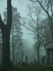 Fog Factor (TooLoose-LeTrek) Tags: tree cemetery fog cross mausoleum gravestone crypt