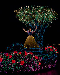 Glow White (Peter E. Lee) Tags: light roses tree japan night lights glow disney parade jp chiba float snowwhite 2010 tdr tokyodisneyresort tokyodisneylandelectricalparade dreamlights tokyodisneylandresort tokyodisneylandpark disneyphotochallenge disneyphotochallengewinner tdlr