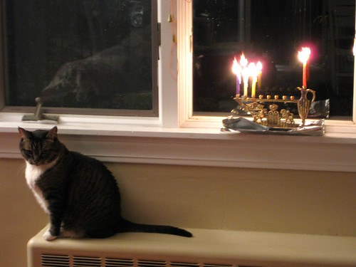 Magic + Menorah