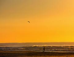 Vem chegando o verão! (Miriam Cardoso de Souza) Tags: natureza paisagens calor sunsummer torresrs verãosolmarbeachamanhecer